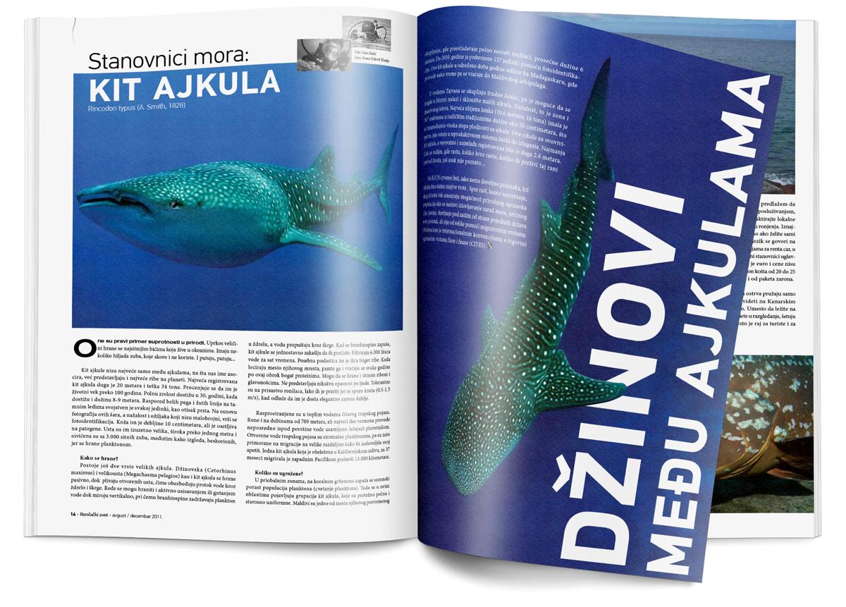diving-magazine